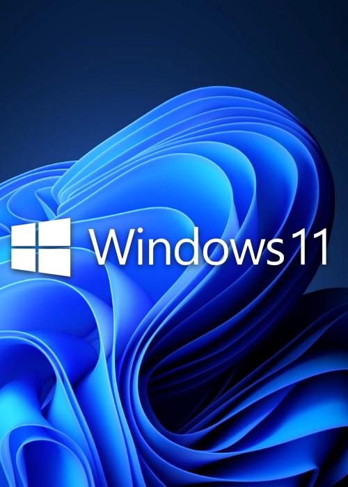 Buy Microsoft Windows 11 Pro OEM CD-KEY GLOBAL